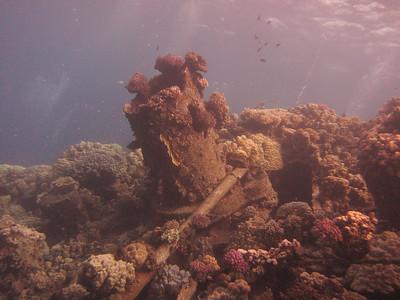 20120530 Dive, Abu Galawa Kebira