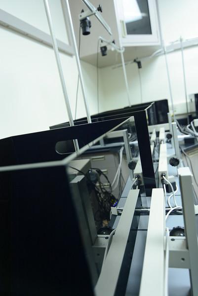 CNRM 2018 labs184.jpg