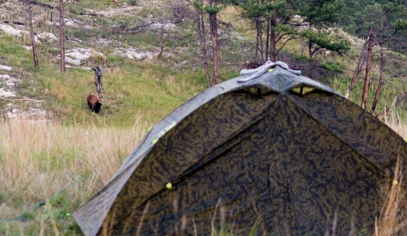 2016 SD Wind Cave Camping -28.jpg