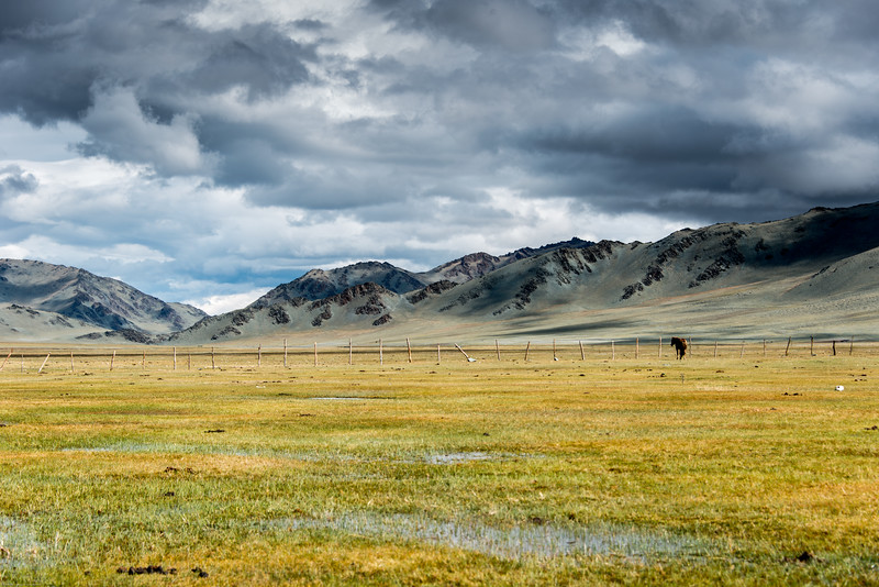 Mongolsko (460 of 640).jpg