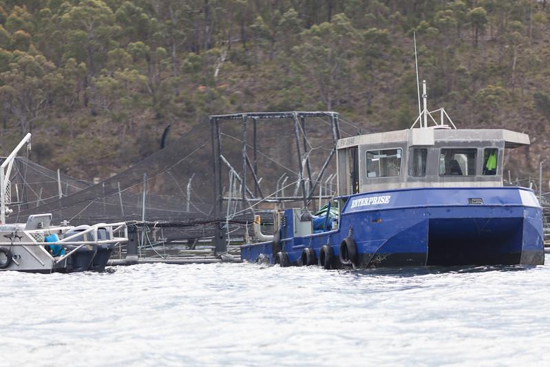 Tasmania_2015_030.jpg