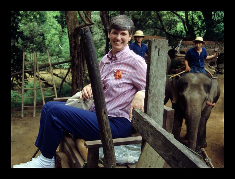 Teak Forest - Thailand - 1989.jpg