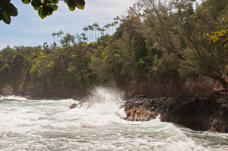 North of Hilo (7 of 40)