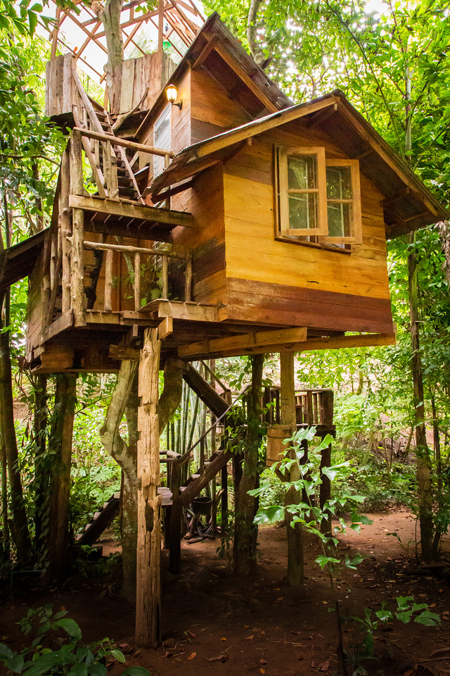 Exterior View of the Thailand Tree House