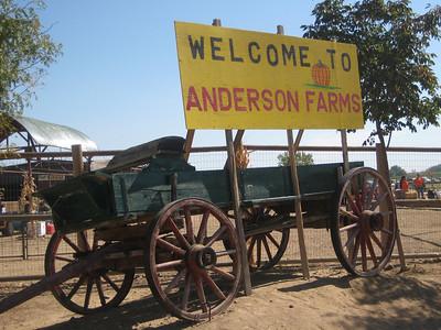 Anderson Farms 2010