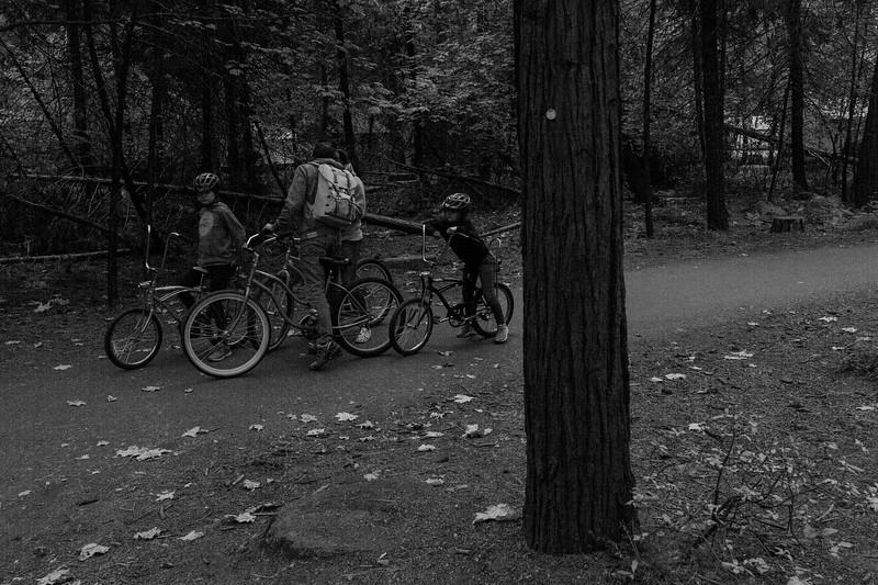 Forest_City_Photographs_Honeymoon_Califonia_San_francisco_Yosimite-133.jpg
