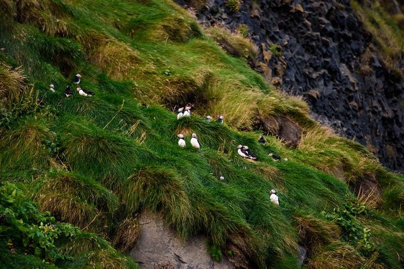 20180824-31 Iceland 727.jpg
