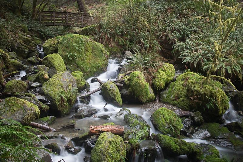 March 16 - Waterfall_ Southern Oregon.jpg