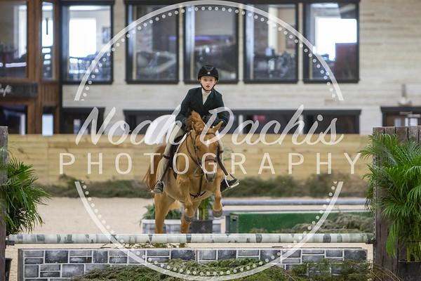 World Equestrian Center Week 4