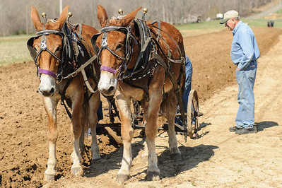 2014 04 19 Plow Day