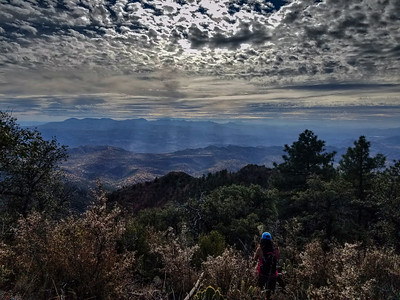 2017-11-04 Pine Mountain Loop