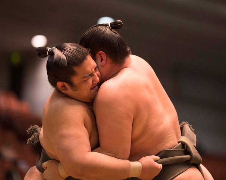 Osaka Sumo 220313 18 .jpg