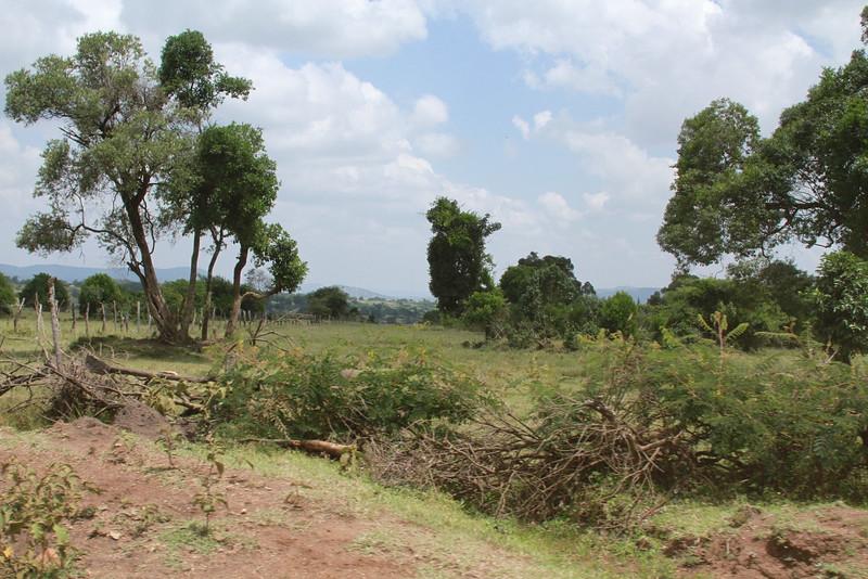 Kenya Part1 '15 2685.JPG
