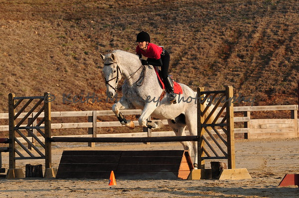 205-206-Schooling Jumpers 2 Ft 9 Inch