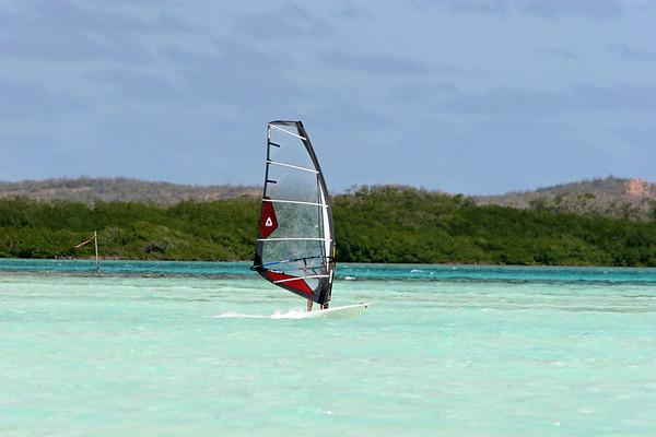 Donna Windsurfing