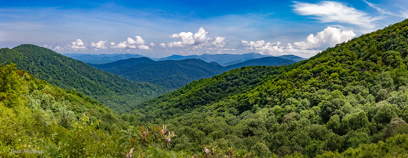 Hogpen Gap View