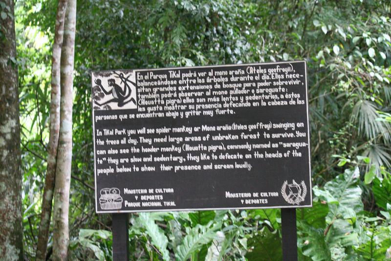 Guatemala Tikal 0 061.JPG