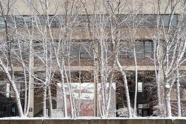 12/3/19 WInter Campus Scenics