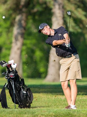 2013 High School Golf