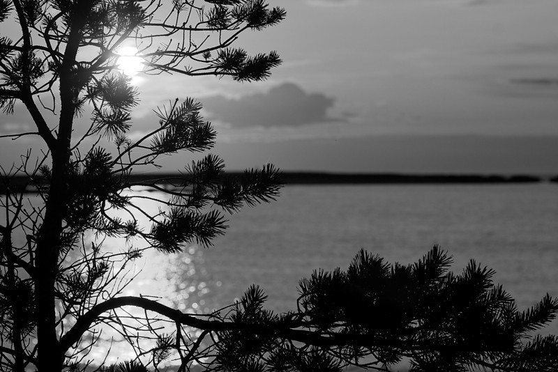 Gotland 20110608_0116.jpg