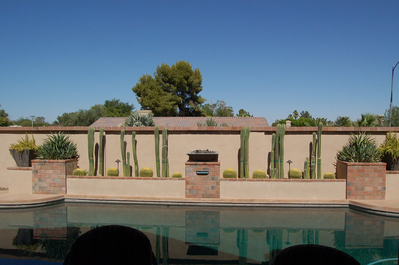 20120608_Scottsdale_Back_Yard_002.JPG