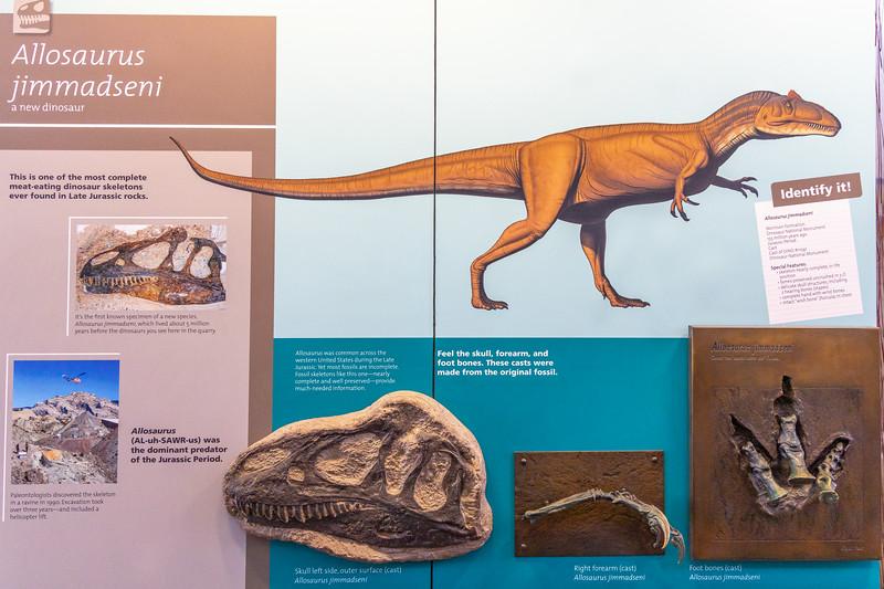 Dinosaur_2019_45.jpg