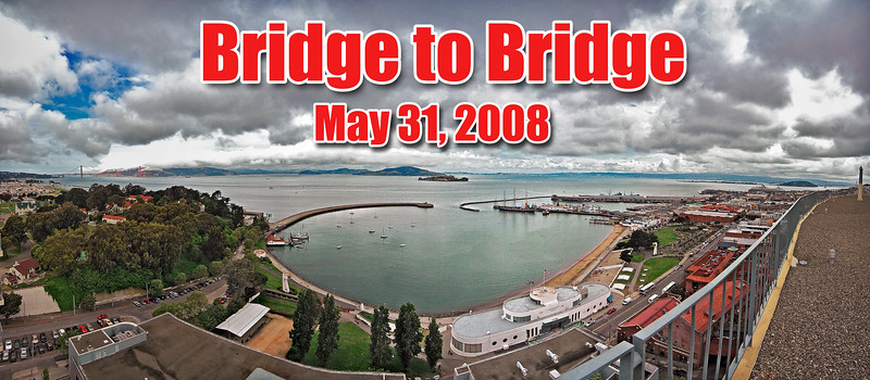 Bridge to Bridge 2008