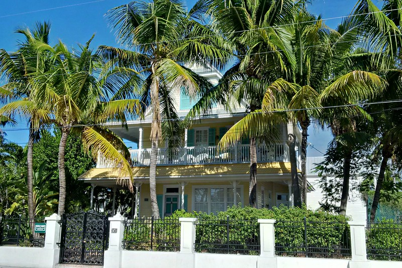 Such brilliant bright colours here in Key West: from the blue sky to the palm trees to the houses.
