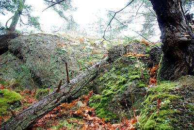 Castle Ridge hike