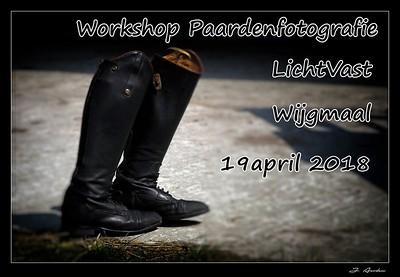 Workshop paardenfotografie @ Wijgmaal 19/04/2018