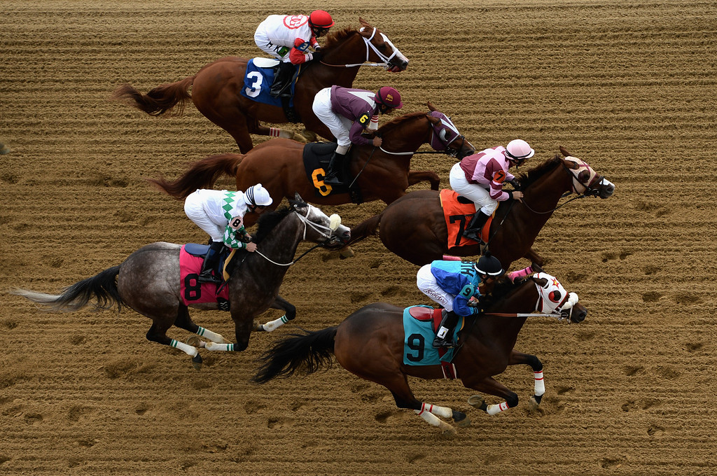 . BALTIMORE, MD - MAY 18: Horses race down the frontstretch duirng the first race prior to the 138th running of the Preakness Stakes at Pimlico Race Course on May 18, 2013 in Baltimore, Maryland.  (Photo by Patrick Smith/Getty Images)