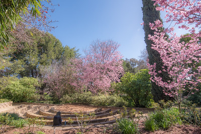 South Coast Botanic Garden - March 2019