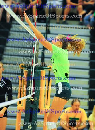 2013 Girls Volleyball