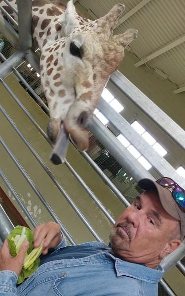 Cheyenne Mtn Zoo 2019 (1005).jpg