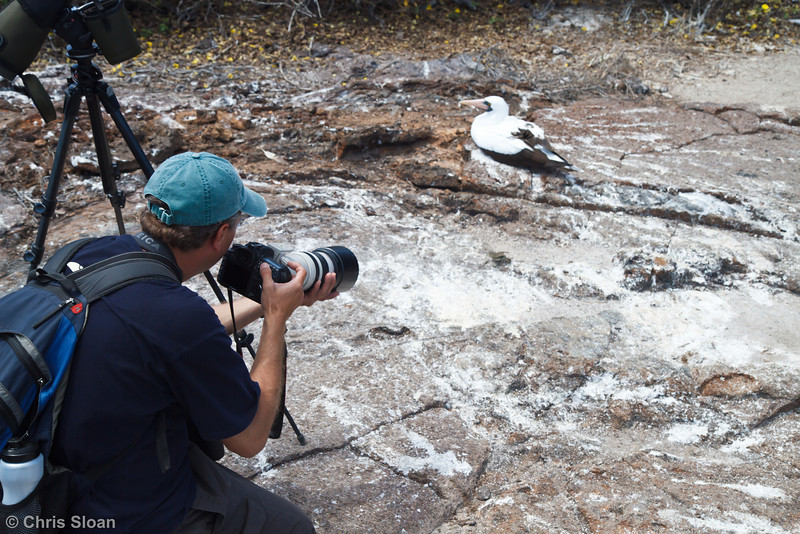 Sam Woods photographing a Sharp-beaked Ground-Finch with Nazca Booby at Prince Phillip Steps, Genovesa, Galapagos, Ecuador (11-25-2011) - 829.jpg