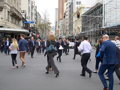 New Zealand Urban