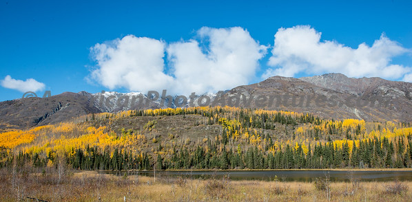 Wrangle-St Elias National Park