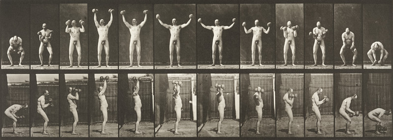 Nude man lifting and holding two 50-lb dumbbells (Animal Locomotion, 1887, plate 325)