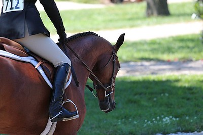 Upperville Colt and Horse Show 2013