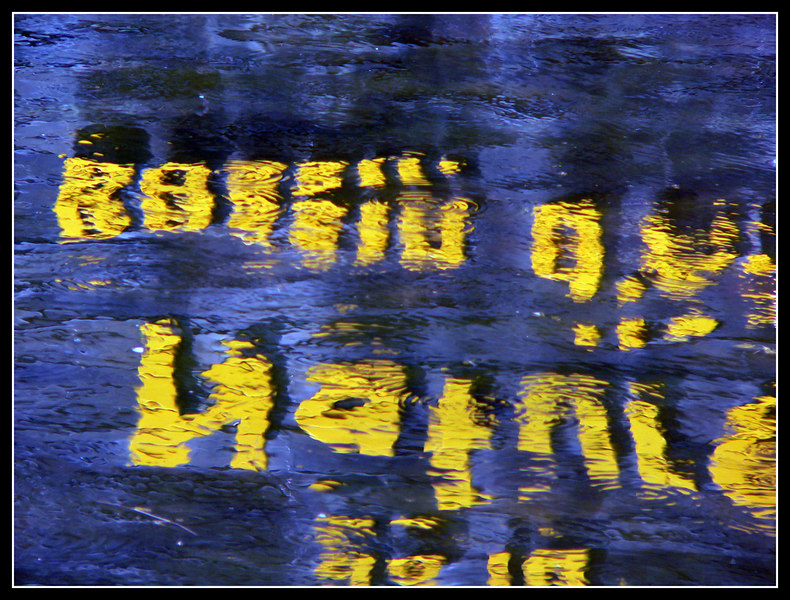 06FR15-Parco-Ornitologico-Tech-024.jpg