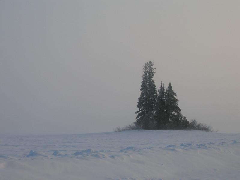 IMG_2731_sunrise_neskantaga_winter_road_resize.JPG
