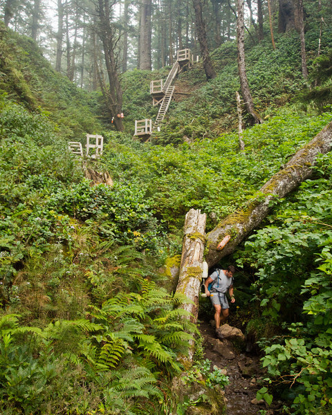 Ladders at Tsusiat campsite - West Coast Trail
