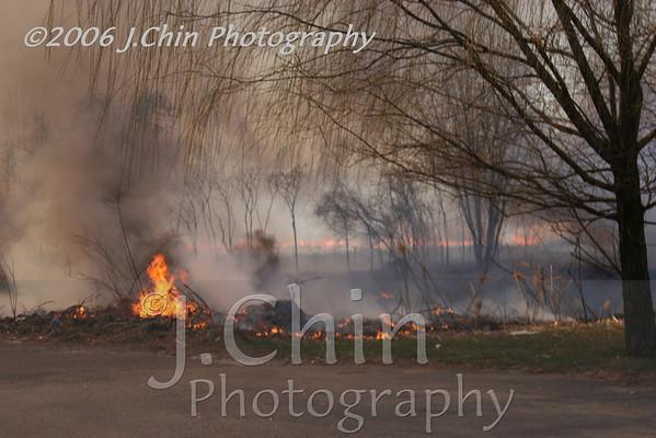 2006-03-23 : Lynn Street brush fire