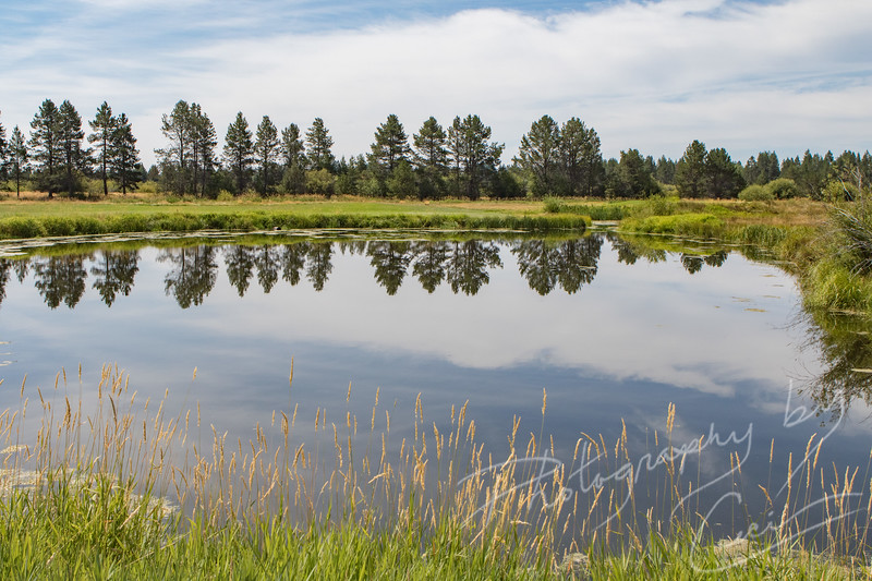 Sunriver Reflection
