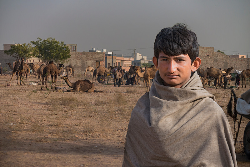 Camels & Youth.jpg