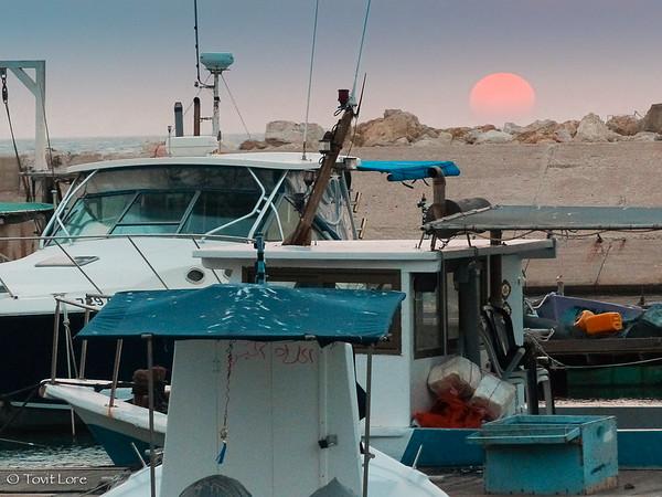Yaffo-Fishermen-port