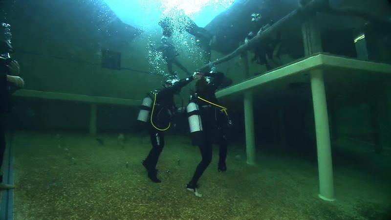 Underwater Walk Edit 45secs.00_00_09_08.Still013.jpg