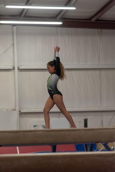 Brianna Gymnastics-0251.jpg