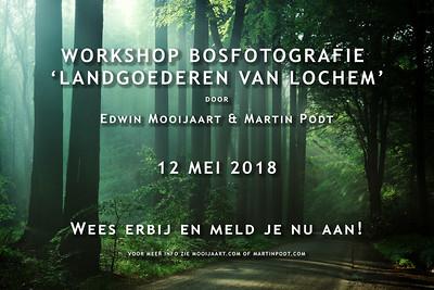 2018-05-12 Workshop bosfotografie (Dutch)