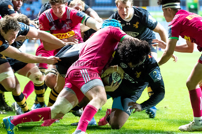 Wasps vs Harlequins European Champions Rugby Cup  22-10-2017
